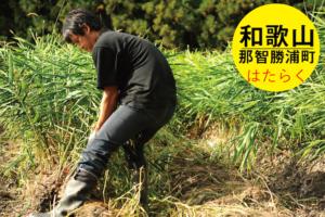 和歌山県で有機農家になる/安田裕志さん/和歌山色川