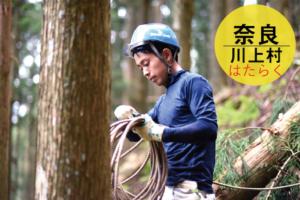 奈良県で架線集材の技術継業-20代からはじめる林業-/カクキチ木材商店/奈良県川上村