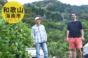 和歌山にて季節労働!FROMFARMプレゼンツの「蜜柑援農」/和歌山県海南市下津町